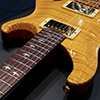 PRS Custom22 Trem Artist Package - Vintage Yellow - 【20th Anniversary】
