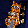 PRS Experience 2011 Special Edition Custom24 Limited