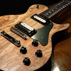 FREEDOM CUSTOM GUITAR RESEARCH {BUG} Guitar of the Month(GOM) RRF-12 Spalted Maple Top / Natural Satin