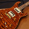 >PS#1715 Custom24 STP / BRW neck & FB / Burnt Orange